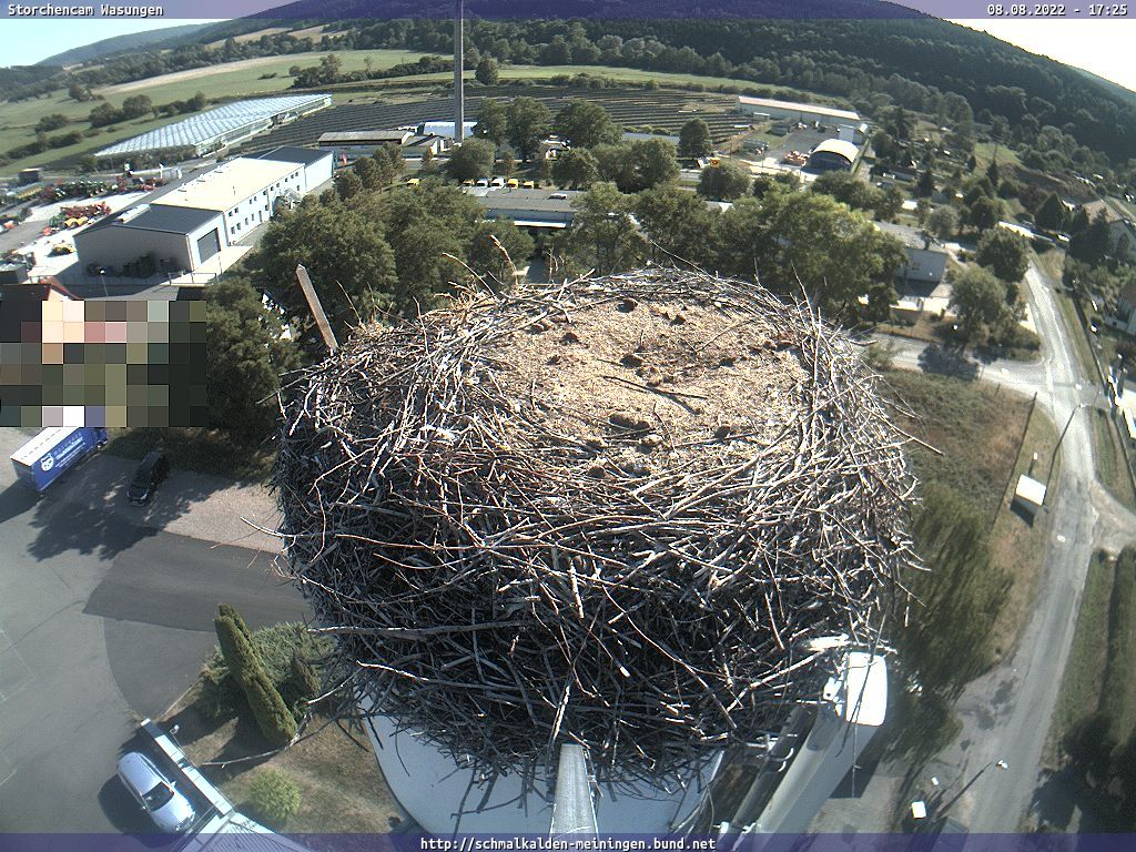 Webcam Storchennest Meiningen